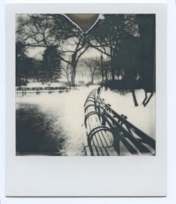 Winter scene Strawberry Fields