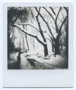 Central Park Magic