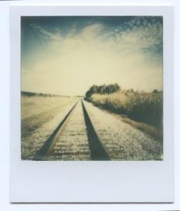 Tracks by Bayou Bienville